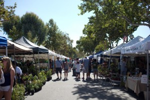 Village Venture event in Claremont CA