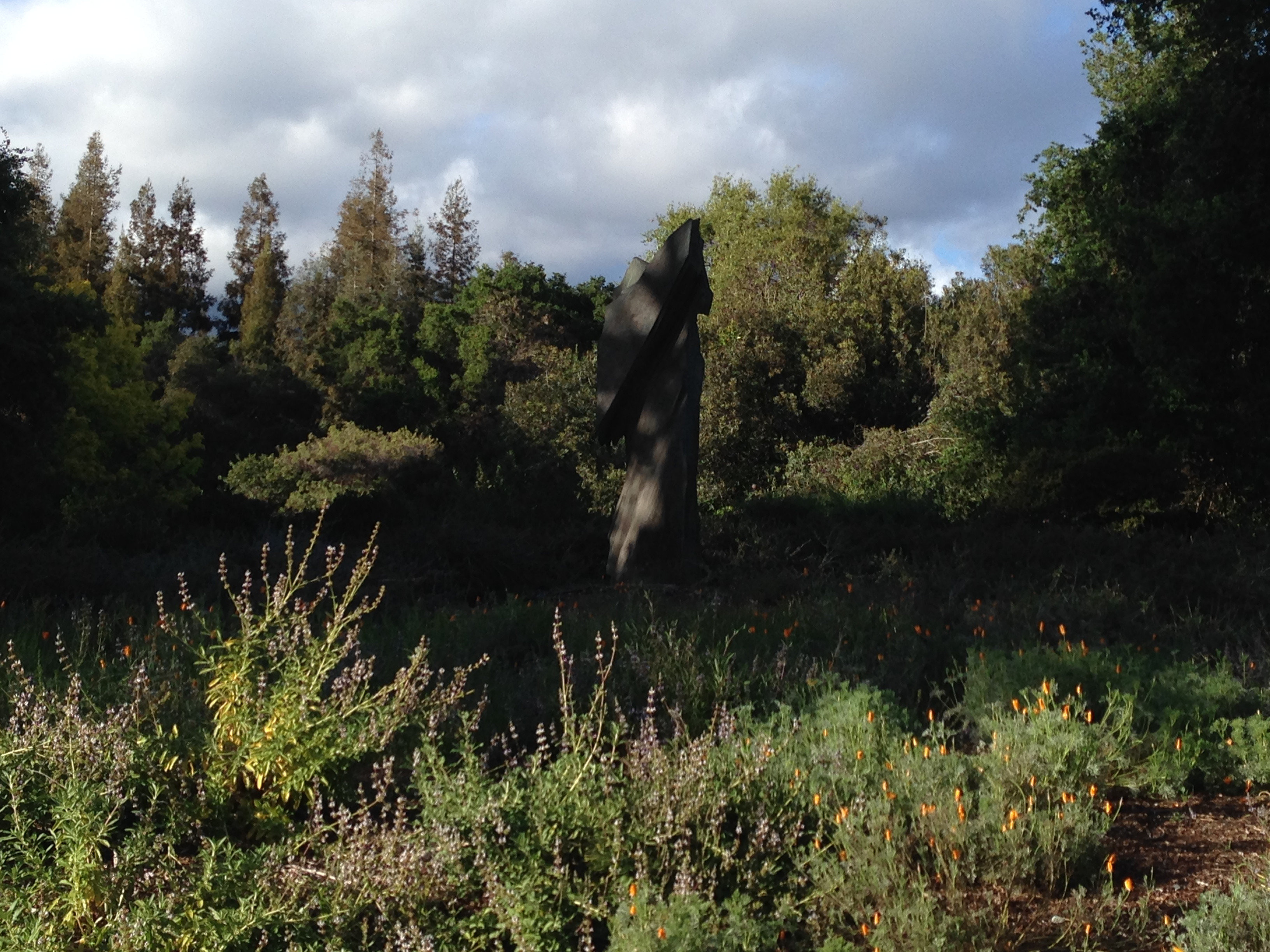 Tours Are An Ideal Way To Learn More About Rancho Santa Ana Botanic Garden  And California Native Plants.